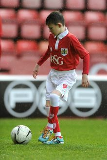 Bristol City v Yeovil Town 261214